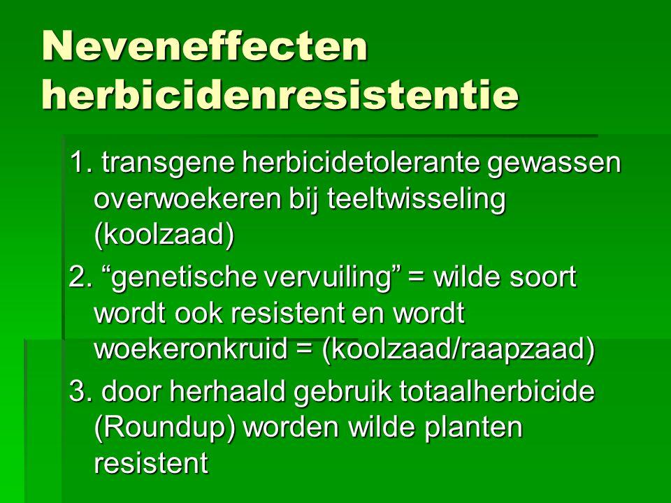 """Neveneffecten herbicidenresistentie 1. transgene herbicidetolerante gewassen overwoekeren bij teeltwisseling (koolzaad) 2. """"genetische vervuiling"""" = w"""