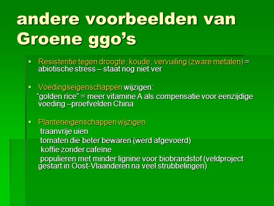 andere voorbeelden van Groene ggo's  Resistentie tegen droogte, koude, vervuiling (zware metalen) = abiotische stress – staat nog niet ver  Voedings