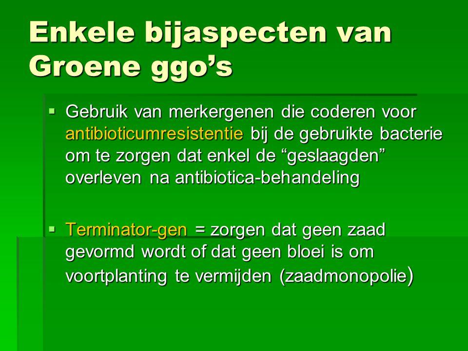 Enkele bijaspecten van Groene ggo's  Gebruik van merkergenen die coderen voor antibioticumresistentie bij de gebruikte bacterie om te zorgen dat enke