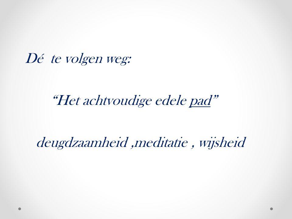 Dé te volgen weg: Het achtvoudige edele pad deugdzaamheid,meditatie, wijsheid