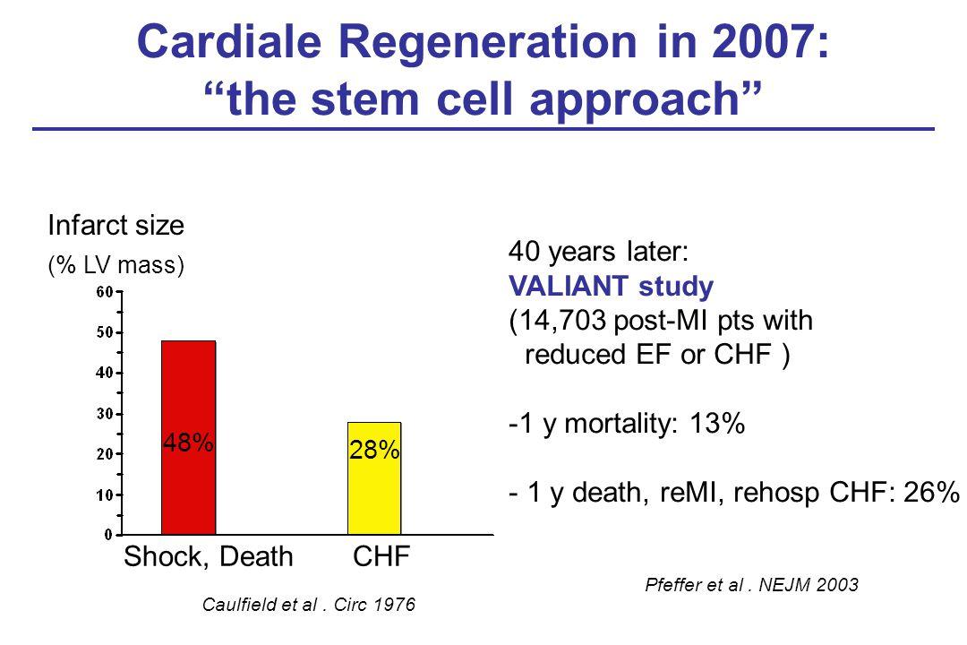 "Cardiale Regeneration in 2007: ""the stem cell approach"" Caulfield et al. Circ 1976 Infarct size (% LV mass) 48% 28% Shock, DeathCHF Pfeffer et al. NEJ"