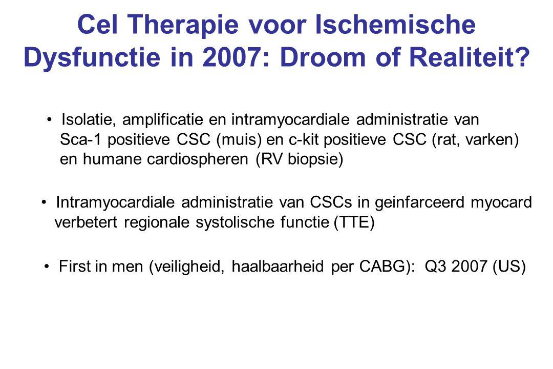 Cel Therapie voor Ischemische Dysfunctie in 2007: Droom of Realiteit? Isolatie, amplificatie en intramyocardiale administratie van Sca-1 positieve CSC