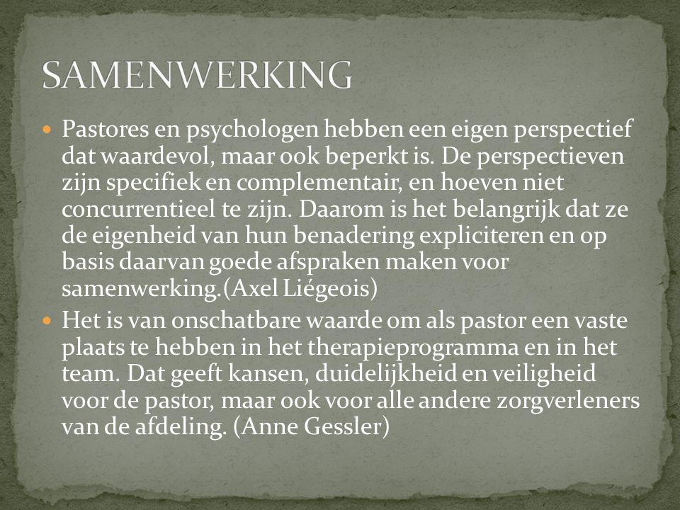 Pastores en psychologen hebben een eigen perspectief dat waardevol, maar ook beperkt is. De perspectieven zijn specifiek en complementair, en hoeven n