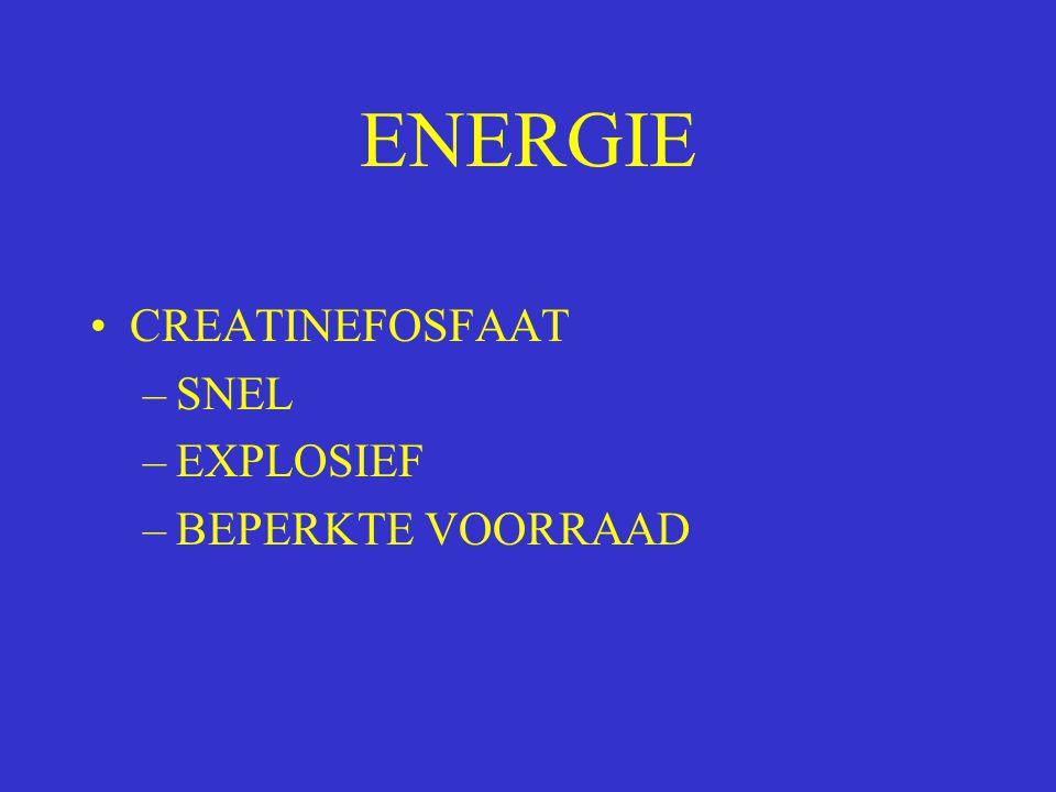 ENERGIE CREATINEFOSFAAT –SNEL –EXPLOSIEF –BEPERKTE VOORRAAD