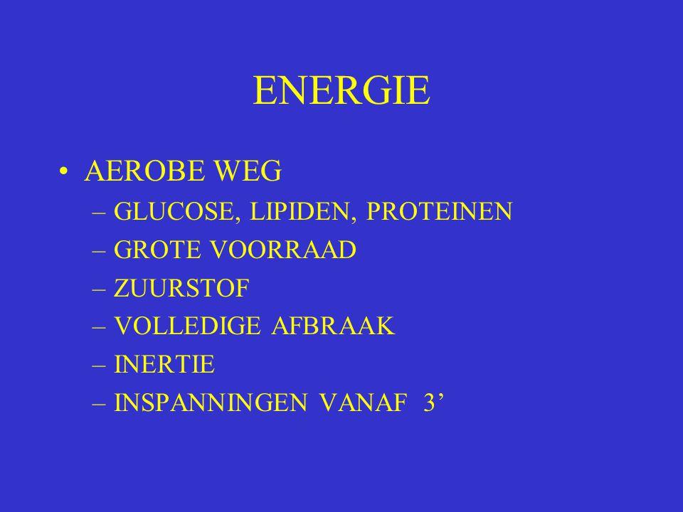 ENERGIE AEROBE WEG –GLUCOSE, LIPIDEN, PROTEINEN –GROTE VOORRAAD –ZUURSTOF –VOLLEDIGE AFBRAAK –INERTIE –INSPANNINGEN VANAF 3'