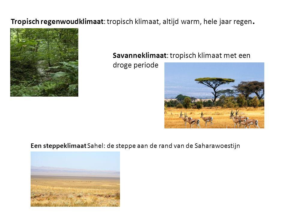 Tropisch regenwoudklimaat: tropisch klimaat, altijd warm, hele jaar regen. Savanneklimaat: tropisch klimaat met een droge periode Een steppeklimaat Sa