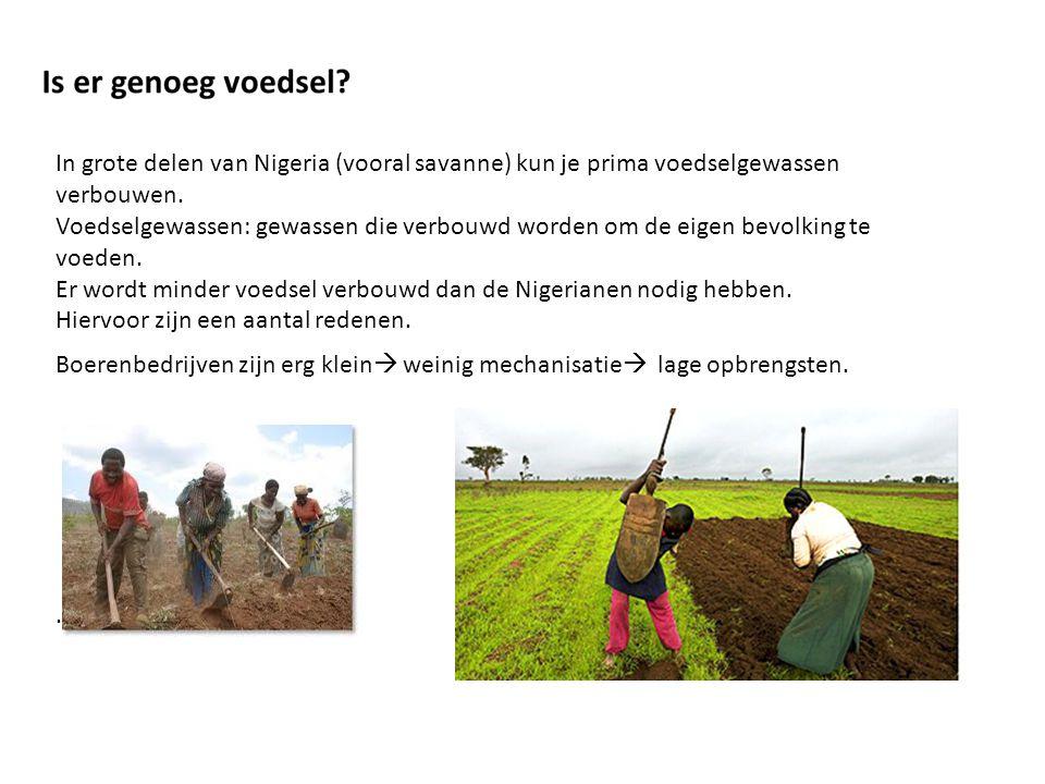 In grote delen van Nigeria (vooral savanne) kun je prima voedselgewassen verbouwen. Voedselgewassen: gewassen die verbouwd worden om de eigen bevolkin