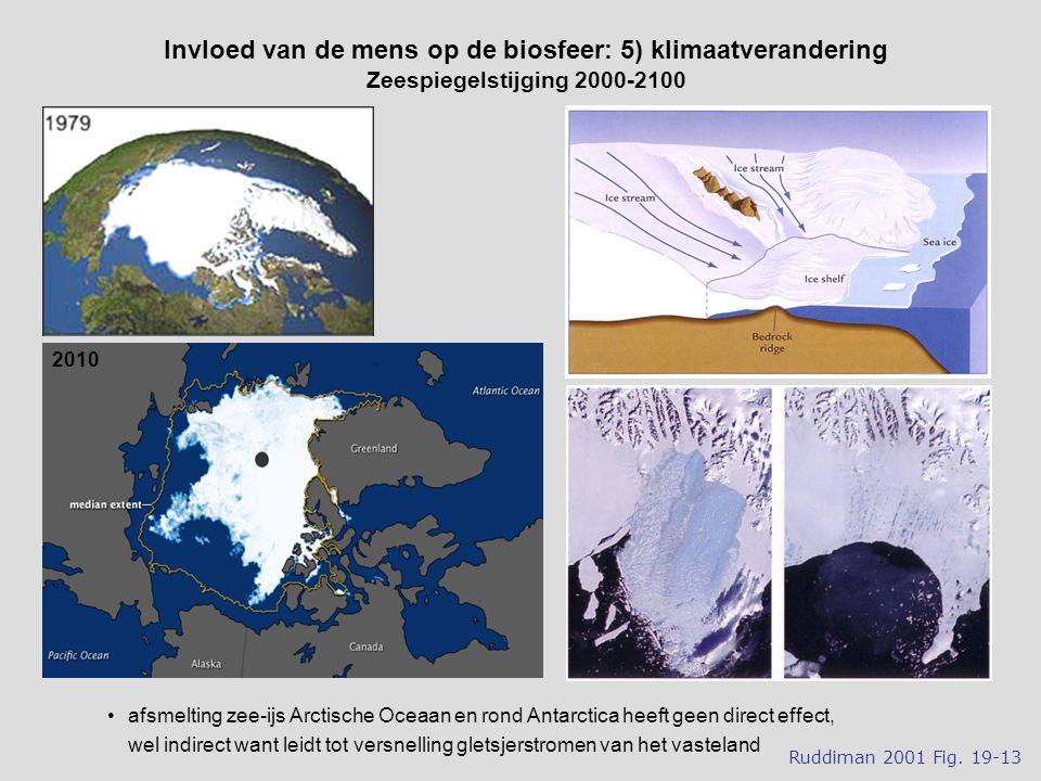 afsmelting zee-ijs Arctische Oceaan en rond Antarctica heeft geen direct effect, wel indirect want leidt tot versnelling gletsjerstromen van het vasteland Invloed van de mens op de biosfeer: 5) klimaatverandering Zeespiegelstijging 2000-2100 Ruddiman 2001 Fig.