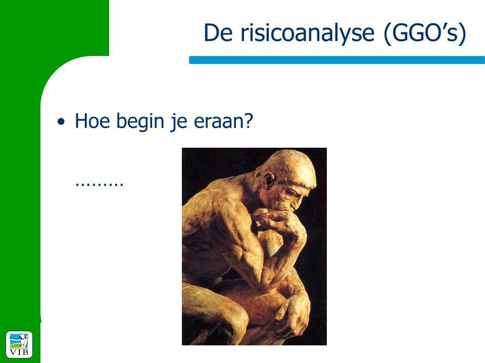 De risicoanalyse (GGO's) Hoe begin je eraan? ………