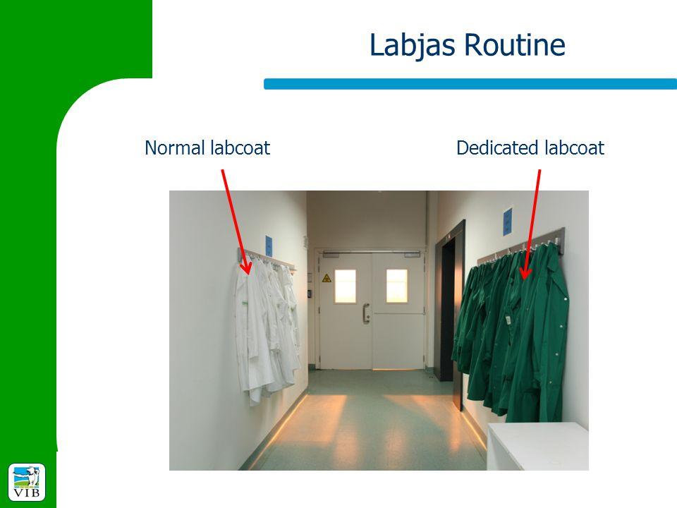 Labjas Routine Normal labcoatDedicated labcoat