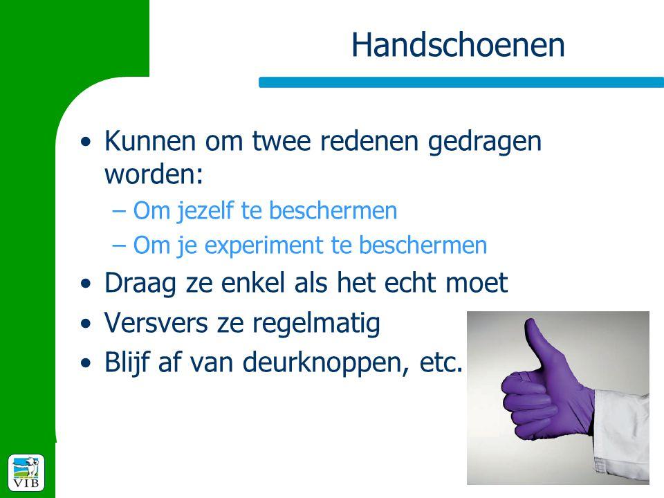 Handschoenen Kunnen om twee redenen gedragen worden: –Om jezelf te beschermen –Om je experiment te beschermen Draag ze enkel als het echt moet Versver