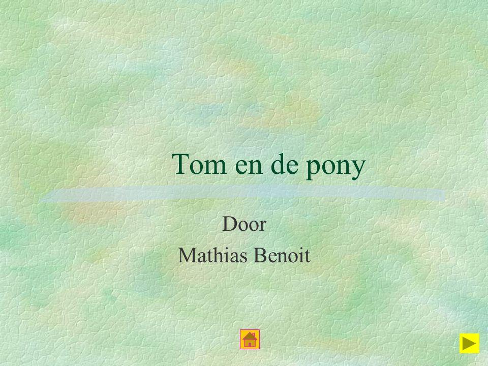 Tom en de pony Door Mathias Benoit