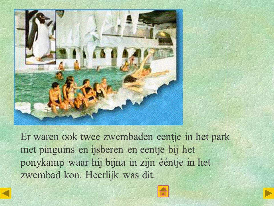 Er waren ook twee zwembaden eentje in het park met pinguins en ijsberen en eentje bij het ponykamp waar hij bijna in zijn ééntje in het zwembad kon.