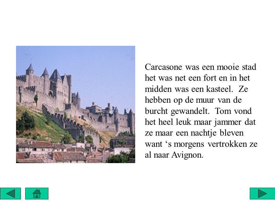 Carcasone was een mooie stad het was net een fort en in het midden was een kasteel.