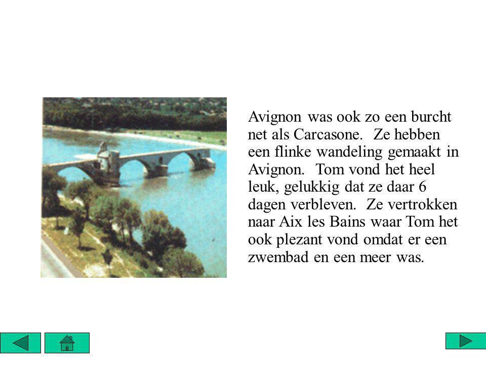 Avignon was ook zo een burcht net als Carcasone. Ze hebben een flinke wandeling gemaakt in Avignon.