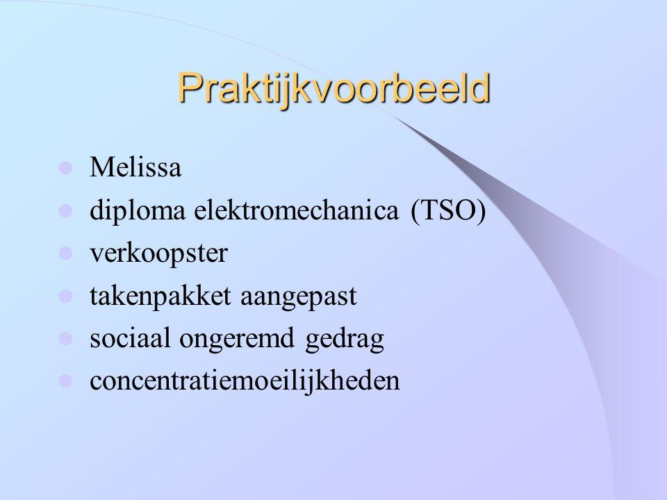 Praktijkvoorbeeld Melissa diploma elektromechanica (TSO) verkoopster takenpakket aangepast sociaal ongeremd gedrag concentratiemoeilijkheden