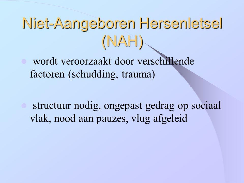 Niet-Aangeboren Hersenletsel (NAH) wordt veroorzaakt door verschillende factoren (schudding, trauma) structuur nodig, ongepast gedrag op sociaal vlak,