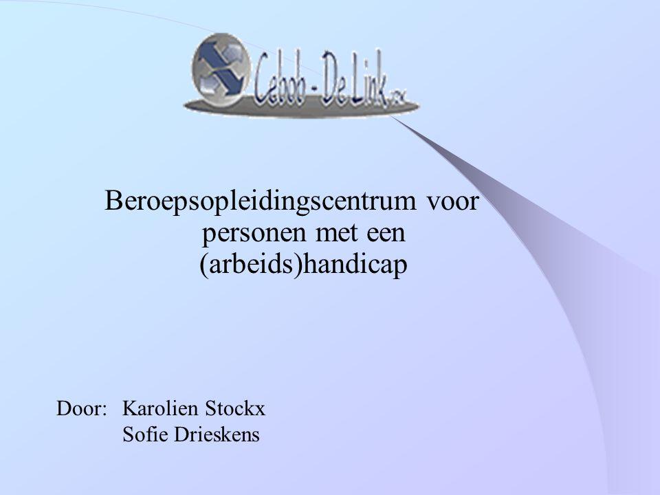 Beroepsopleidingscentrum voor personen met een (arbeids)handicap Door:Karolien Stockx Sofie Drieskens