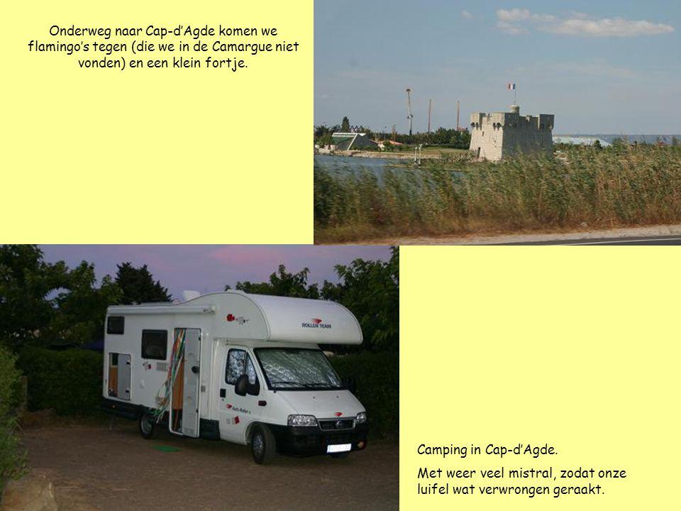 Onderweg naar Cap-d'Agde komen we flamingo's tegen (die we in de Camargue niet vonden) en een klein fortje. Camping in Cap-d'Agde. Met weer veel mistr