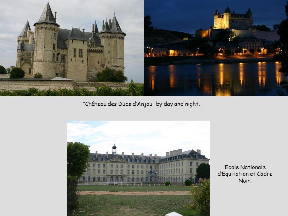 Château des Ducs d'Anjou by day and night. Ecole Nationale d'Equitation et Cadre Noir.