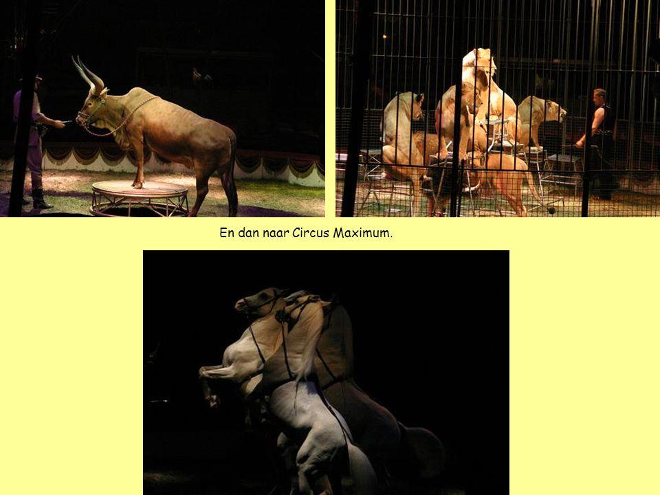 En dan naar Circus Maximum.