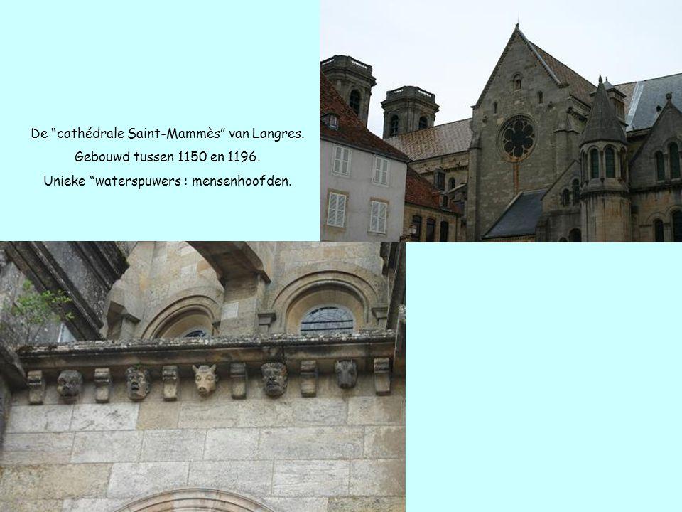 """De """"cathédrale Saint-Mammès"""" van Langres. Gebouwd tussen 1150 en 1196. Unieke """"waterspuwers : mensenhoofden."""