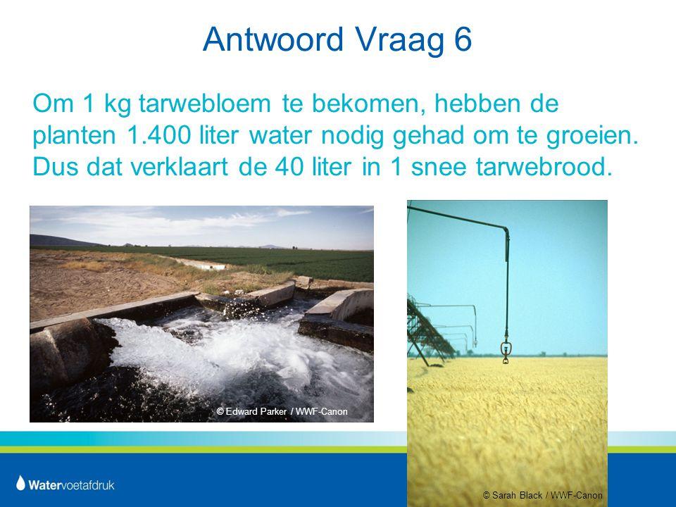 Antwoord Vraag 6 Om 1 kg tarwebloem te bekomen, hebben de planten 1.400 liter water nodig gehad om te groeien.