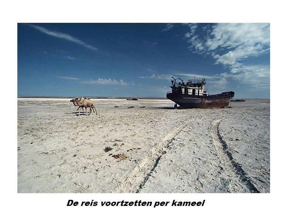 De reis voortzetten per kameel