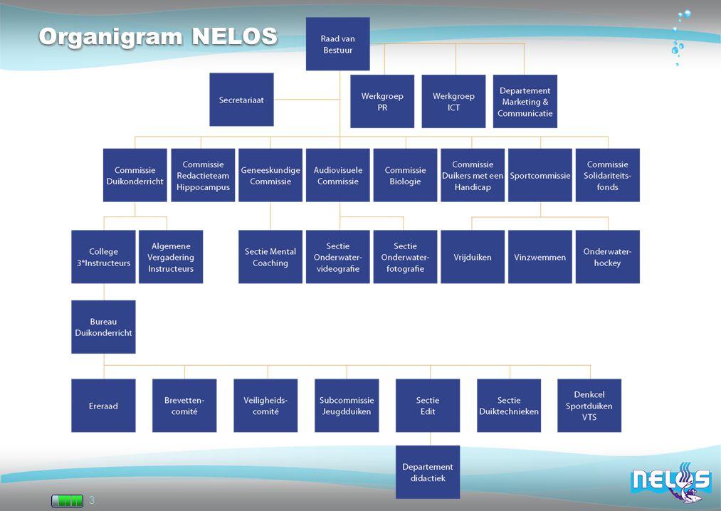 3 Organigram NELOS