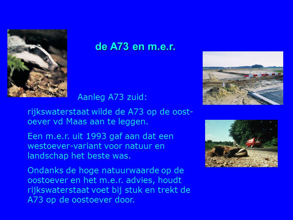 de A73 en m.e.r. Aanleg A73 zuid: rijkswaterstaat wilde de A73 op de oost- oever vd Maas aan te leggen. Een m.e.r. uit 1993 gaf aan dat een westoever-