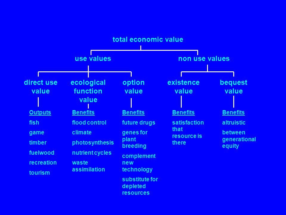 total economic value use valuesnon use values direct use value ecological function value option value existence value bequest value Outputs fish game timber fuelwood recreation tourism Benefits flood control climate photosynthesis nutrient cycles waste assimilation Benefits future drugs genes for plant breeding complement new technology substitute for depleted resources Benefits satisfaction that resource is there Benefits altruistic between generational equity