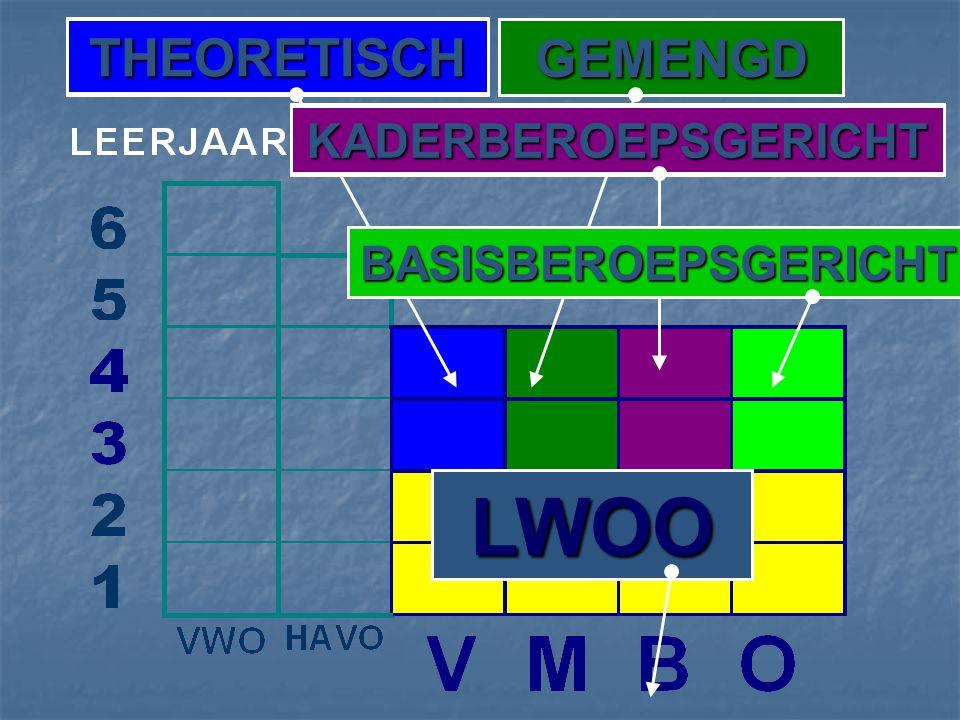 GEMENGD THEORETISCH KADERBEROEPSGERICHT BASISBEROEPSGERICHT LWOO