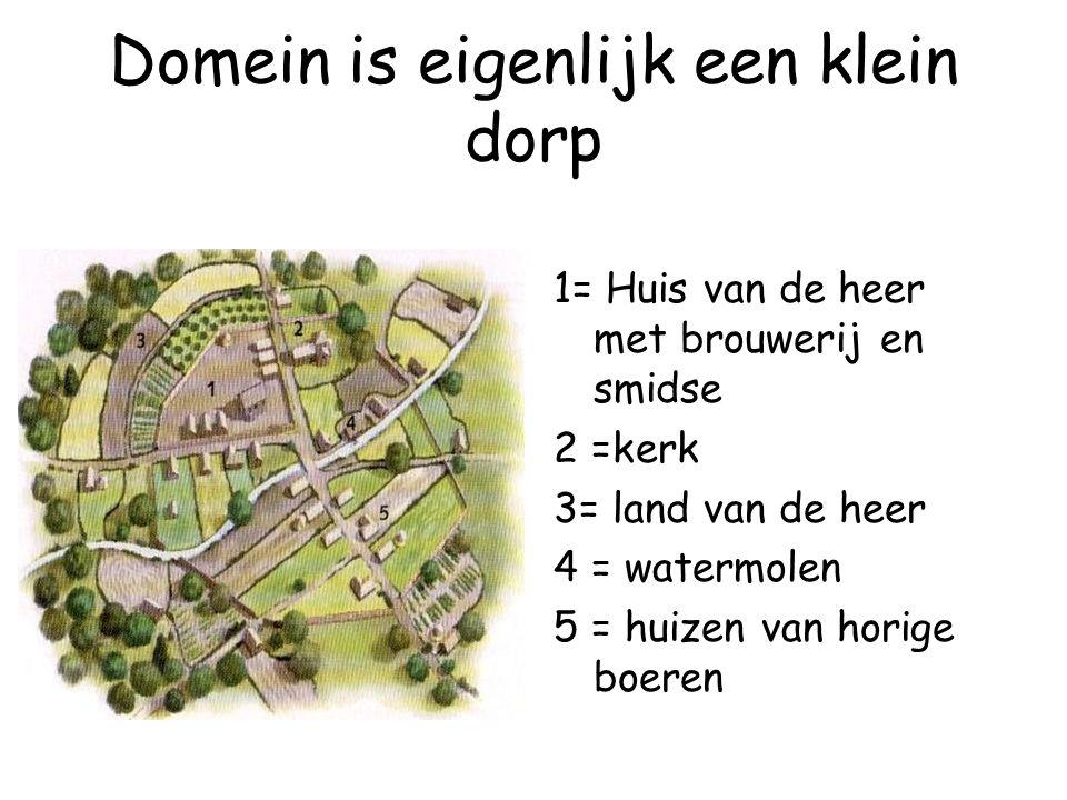 Domein is eigenlijk een klein dorp 1= Huis van de heer met brouwerij en smidse 2 =kerk 3= land van de heer 4 = watermolen 5 = huizen van horige boeren