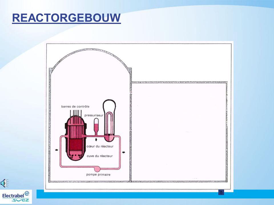 Kerncentrale van Tihange 42 De stoomgenerator zet de warmte over van de primaire naar de secundaire kring Zet het water van de secundaire kring om in