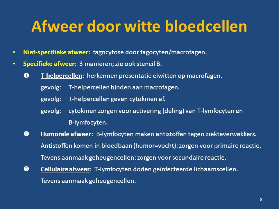 Afweer door witte bloedcellen Niet-specifieke afweer: fagocytose door fagocyten/macrofagen. Specifieke afweer: 3 manieren; zie ook stencil B.  T-help