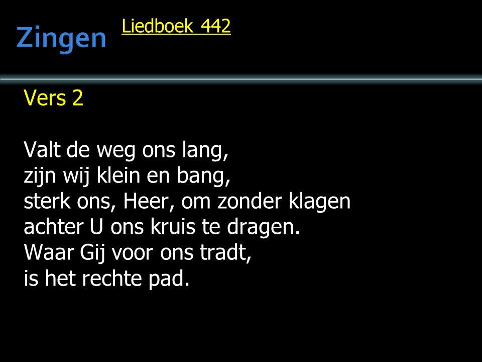 Liedboek 442 Vers 2 Valt de weg ons lang, zijn wij klein en bang, sterk ons, Heer, om zonder klagen achter U ons kruis te dragen.