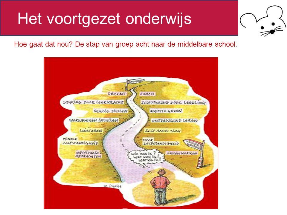 Overzicht onderwijsstelsel