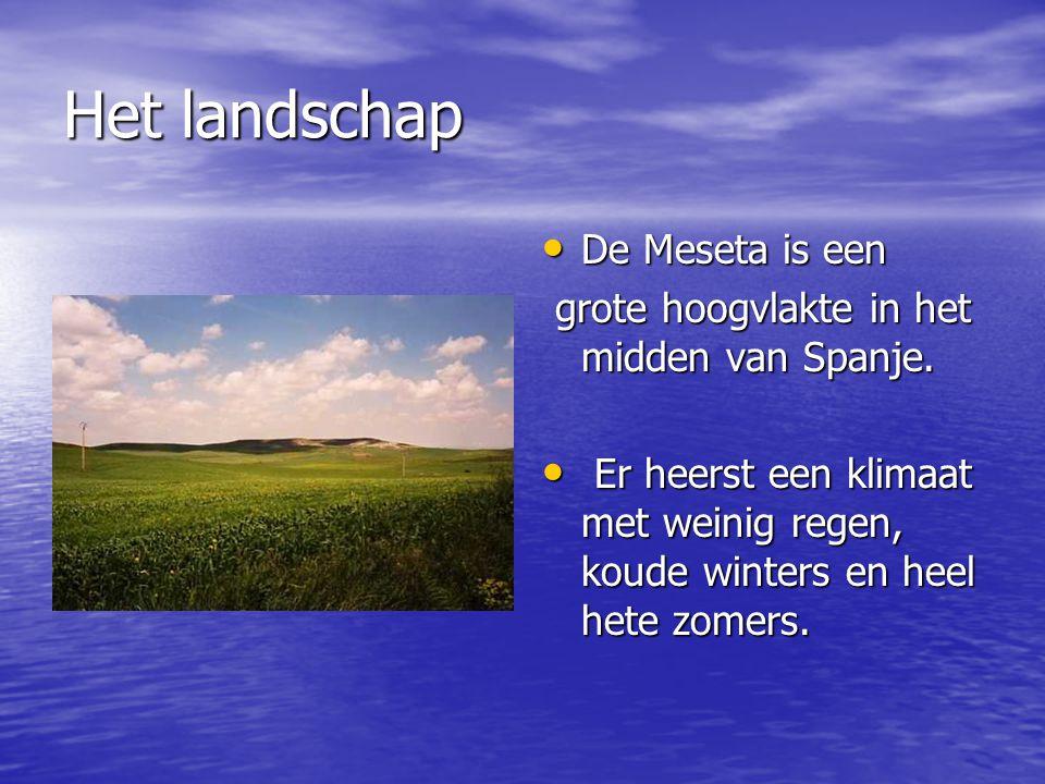 Het landschap De Meseta is een De Meseta is een grote hoogvlakte in het midden van Spanje. grote hoogvlakte in het midden van Spanje. Er heerst een kl