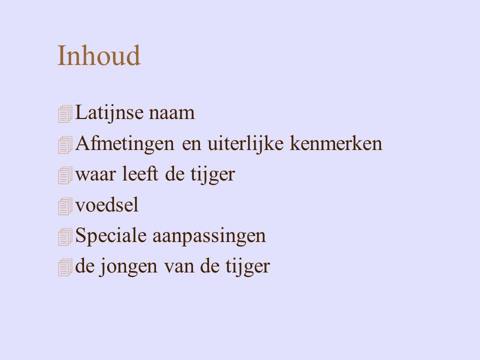 Inhoud 4 Latijnse naam 4 Afmetingen en uiterlijke kenmerken 4 waar leeft de tijger 4 voedsel 4 Speciale aanpassingen 4 de jongen van de tijger