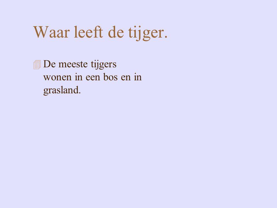 Waar leeft de tijger. 4 De meeste tijgers wonen in een bos en in grasland.