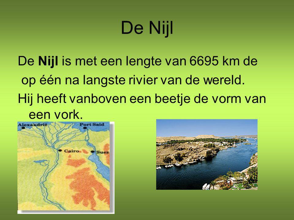 De Nijl De Nijl is met een lengte van 6695 km de op één na langste rivier van de wereld. Hij heeft vanboven een beetje de vorm van een vork.