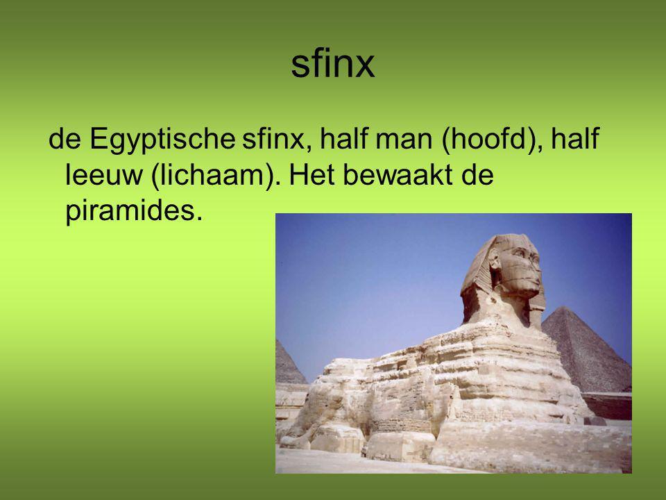 sfinx de Egyptische sfinx, half man (hoofd), half leeuw (lichaam). Het bewaakt de piramides.