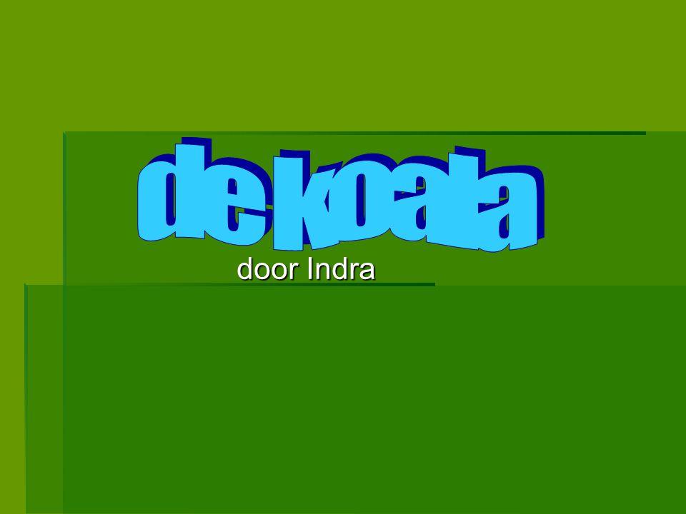 door Indra door Indra