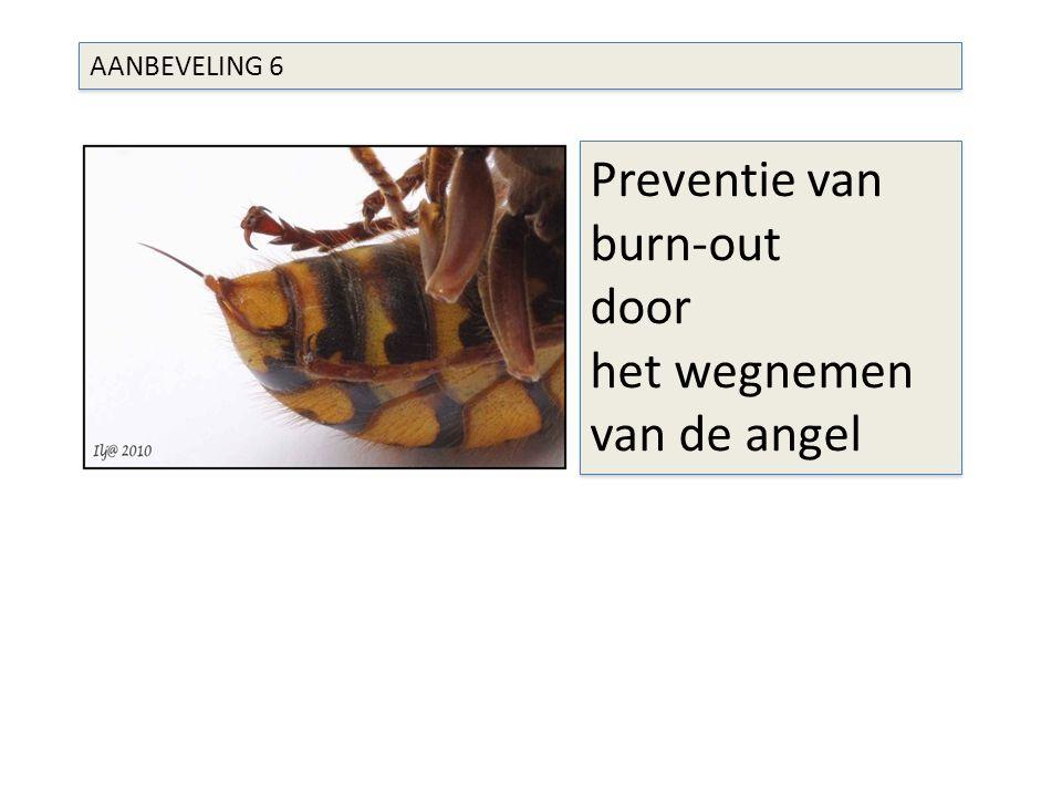 AANBEVELING 6 Preventie van burn-out door het wegnemen van de angel Preventie van burn-out door het wegnemen van de angel