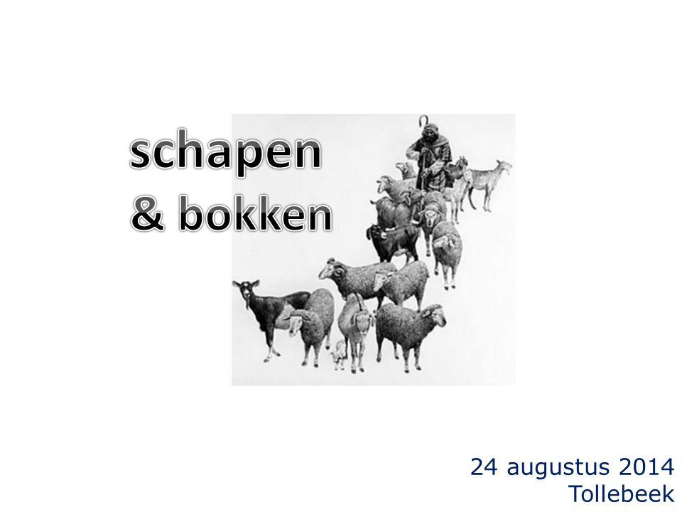24 augustus 2014 Tollebeek