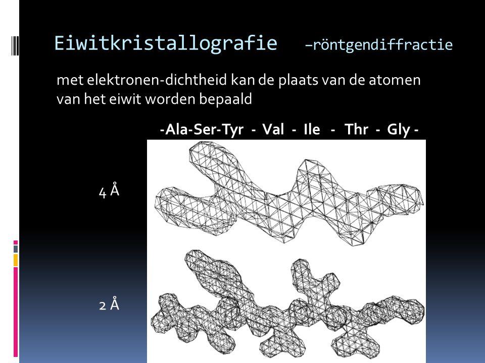 Eiwitkristallografie –röntgendiffractie met elektronen-dichtheid kan de plaats van de atomen van het eiwit worden bepaald 4 Å 2 Å -Ala-Ser-Tyr - Val -