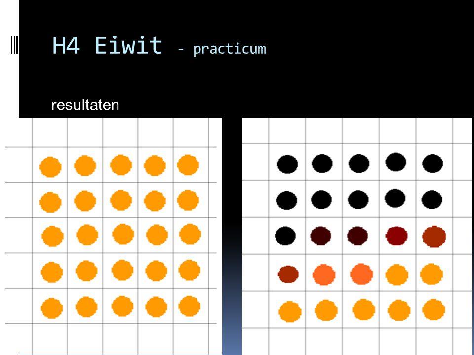 resultaten H4 Eiwit - practicum