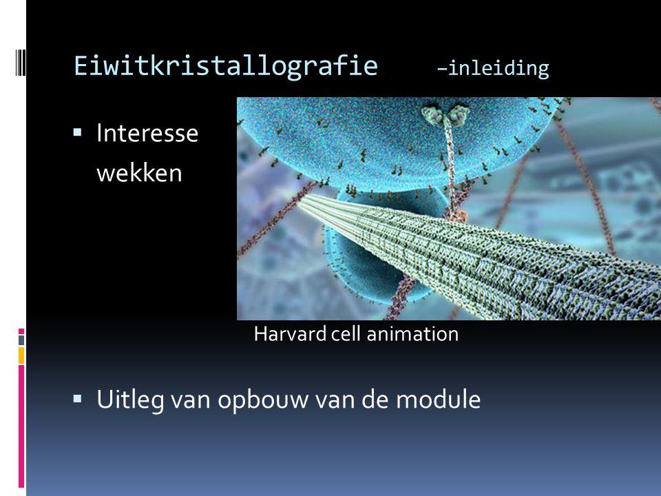 Eiwitkristallografie –inleiding  Interesse wekken  Uitleg van opbouw van de module Harvard cell animation
