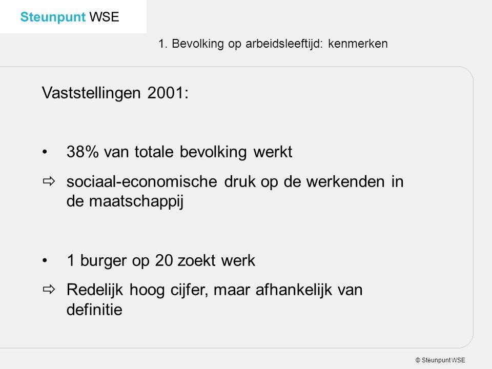© Steunpunt WSE 1. Bevolking op arbeidsleeftijd: kenmerken Vaststellingen 2001: 38% van totale bevolking werkt  sociaal-economische druk op de werken