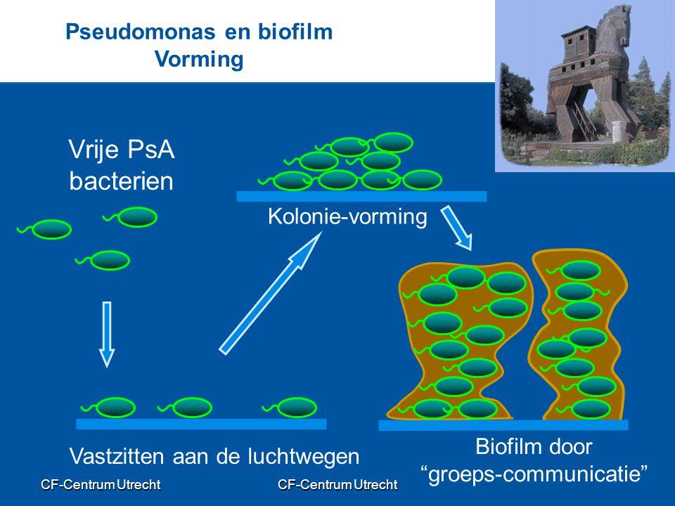 CF-Centrum Utrecht Pseudomonas en biofilm Vorming Vrije PsA bacterien Vastzitten aan de luchtwegen Kolonie-vorming Biofilm door groeps-communicatie